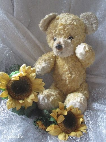"♫ PELUCHE Vieil OURS ""Mallain"", Teddy Bear Antique, COLLECTION d'OURS Anciens ♫"
