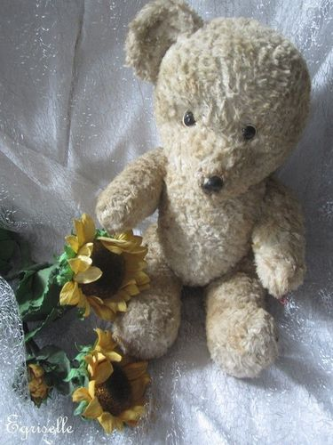 "♫ PELUCHE Vieil OURS ""TiP'ToP"", Teddy Bear Antique, COLLECTION d'OURS Anciens ♫"